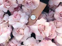 Идеи на тему «Эстетика нежного» (32)   цветочные фоны ...