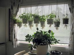 Kitchen Herb Garden Design Indoor Herb Garden Pots 11 Indoor Herb Garden Ideas Kitchen Herb