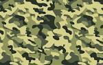 Images & Illustrations of camouflage
