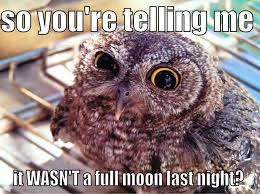 Full moon - quickmeme via Relatably.com