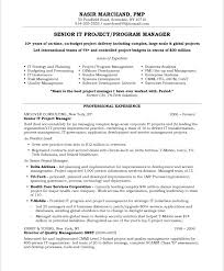 it project manager   free resume samples   blue sky resumesold version old version old version