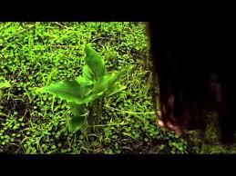 <b>TAME IMPALA</b> '<b>INNERSPEAKER</b>' EP. 1 - YouTube