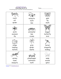 spelling worksheets insects at com