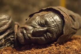 essay on the tollund man  essay on the tollund man