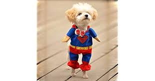 Winter Style <b>Pet Dog</b> Superman <b>Clothes</b> Costume Suit Puppy ...