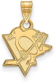 Solid 14k Yellow Gold Official NHL Pittsburgh ... - Amazon.com