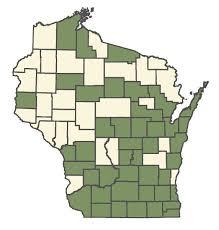 Online Virtual Flora of Wisconsin - Malus pumila