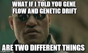 Matrix Morpheus Meme - Imgflip via Relatably.com