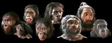 Resultado de imagen de origen ser humano