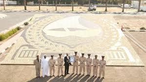 В Дубае была собрана самая большая в мире <b>мозаика из ракушек</b>