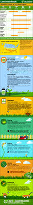 best ideas about lawn care diy landscaping ideas diy lawn care schedule for warm season grasses
