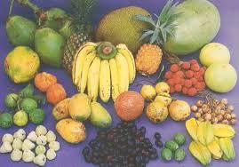 the season i like most essay  essay and paragraphfruits of bangladesh essay