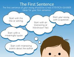 how to write the first sentence of a book report