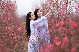 Image result for mùa xuân và em