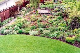 Pacific Northwest Perennial Garden
