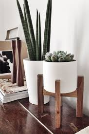 room plants x: amazing indoor plants pots  indoor plants in white pots iu