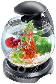 Купить Комплекс аквариумный <b>Tetra Cascade Globe</b> черный 6.8л ...