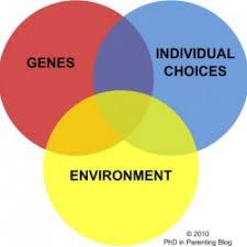 nature vs nurture debate   low cost academic writingnurture vs nature free essay
