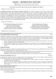 resume samples for s and marketing jobs digital marketing account manager
