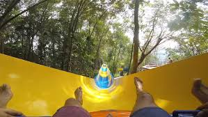 Ride through the <b>trees on the</b> world's longest mat water slide – all ...