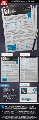 17 best images about cv infographic resume professional resume