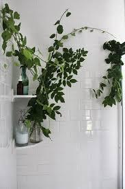 1000 ideas about small spa bathroom on pinterest small spa spa bathrooms and spa bathroom design blog spa bathroom