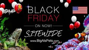 Black Friday Deals are ON NOW! | BigAlsPets.com - YouTube