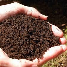 التربة هي الطبقة السطحية الهشة Images?q=tbn:ANd9GcSwxrpwtiksoErm4IWrQGDGjNpbsFOn9b7wgw1ieln6cCylQ4qoRg
