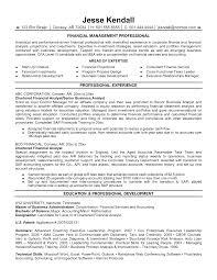 senior financial executive strategic planning nad financial financial analyst