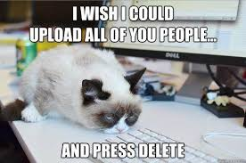 Community Post: 14 Hilarious Grumpy Cat Memes That Will Make You ... via Relatably.com
