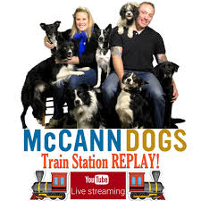 McCann Dog Training - Train Station Replay