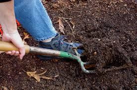 lavori nell'orto
