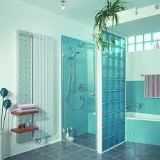 block shower bathroom design pinterest  images about glass blocks bathroom on pinterest painted glass blocks