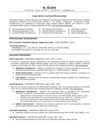 resume examples computer programming resume examples detail programmer employment education skills graphic diagram work experience resume templates for pages resume template pages job