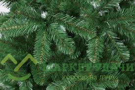<b>Сосна Triumph Tree Санкт-Петербург</b> 185 см. зелёная, 73580 ...