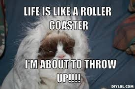 Grumpy Cats | Fun & Games via Relatably.com