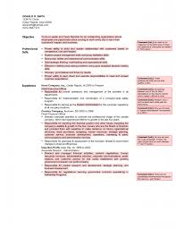 cv of ceo chief executive officer resume ceo resum startup ceo cv of ceo cv of ceo