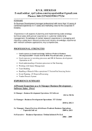 updated business development manager resume
