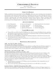 Vice President Resume Samples Vice President Of Sales Resume     Vice President Resume Samples