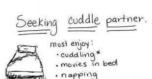 I need a new cuddle buddy :3 via Relatably.com