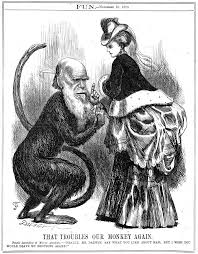 darwin in letters job done darwin correspondence project that troubles our monkey again caricature of charles darwin