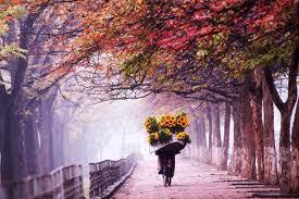 Chòng Chành Bởi Trận Gió Mùa Thu ( Hùng Nguyễn )