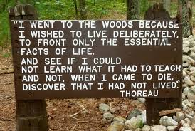 Image result for thoreau quote