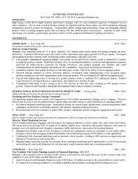 digital marketing manager resume example strategic marketing digital marketing manager resume example