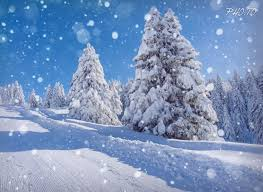 Image result for snow pictures