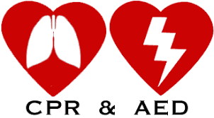 Image result for cpr training images
