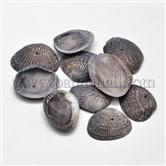 Wholesale <b>Shell Beads</b> Supplies Online - Pandahall.com