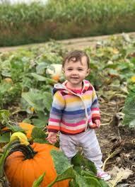 DeBuck's Corn Maze and Pumpkin Patch