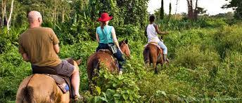 Image result for belize horse back riding