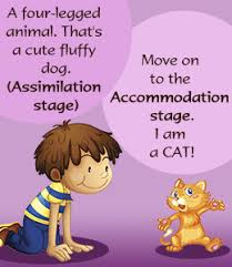 Image result for accommodation vs assimilation